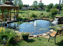 Converting a Water Pond to a Fish Pond