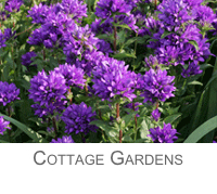 Cottage Style Gardens