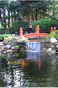 Garden Pond with Bridge Photo from Pondliner