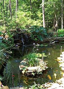 Maintaining a Garden Pond