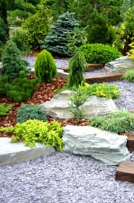 Rock Garden with Wooden Steps