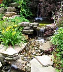Rock Garden Around Stream