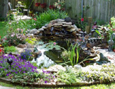 Information on How to Use Preformed Garden Ponds